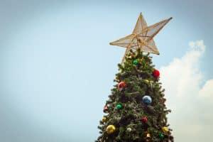 Alfresco Christmas Tree